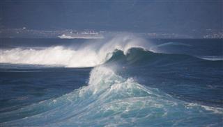 Winter Swells