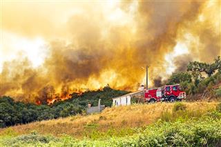Forest Fire Near Home