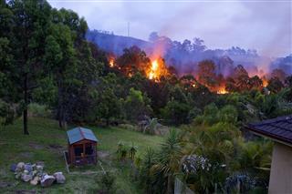 Bush Fire Near Home