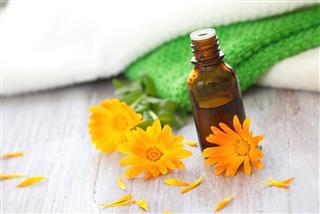 Calendula Essential Aroma Oil