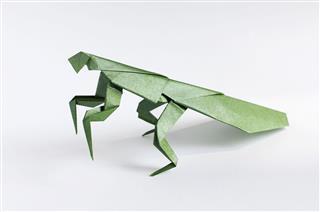 Origami Mantis