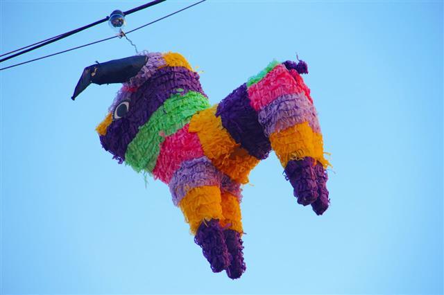 Pinata Mexican Fiesta