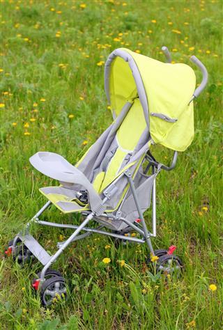 Baby Stroller On Green Lawn