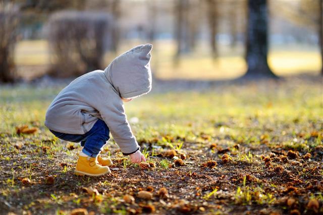 Toddler Walking Outdoors