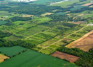 Tree Farm Aerial