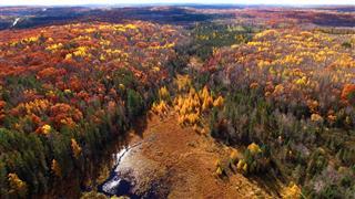 The Valley Lies Between Amazing Autumn