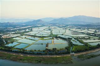 Aerial Image Hong Kong