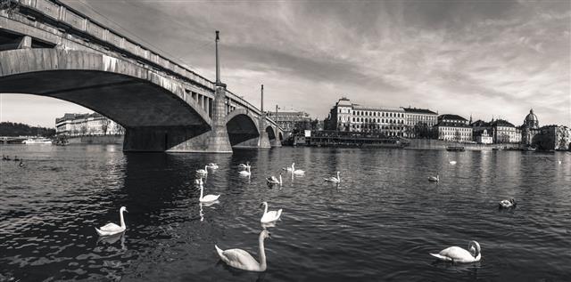 Vintage Panorama Of Prague City