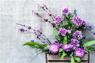 Beautiful Bouquet Of Chrysanthemums