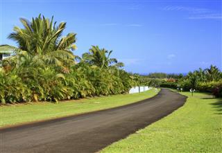 Tropical Road On Kauai Hawaii