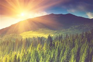 Beautiful Mountain Landscape At Sunshine