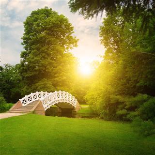 Stone Bridge Over Stream Sunrise