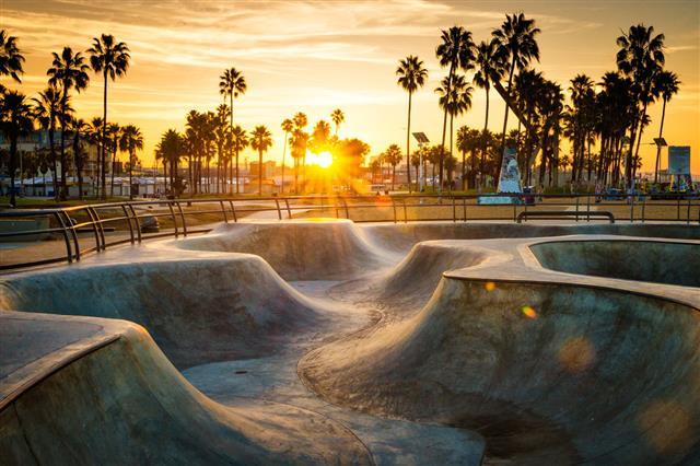 Skateboarding Paradise