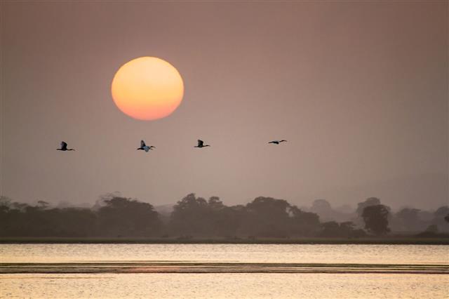 Sunrise Sri Lanka