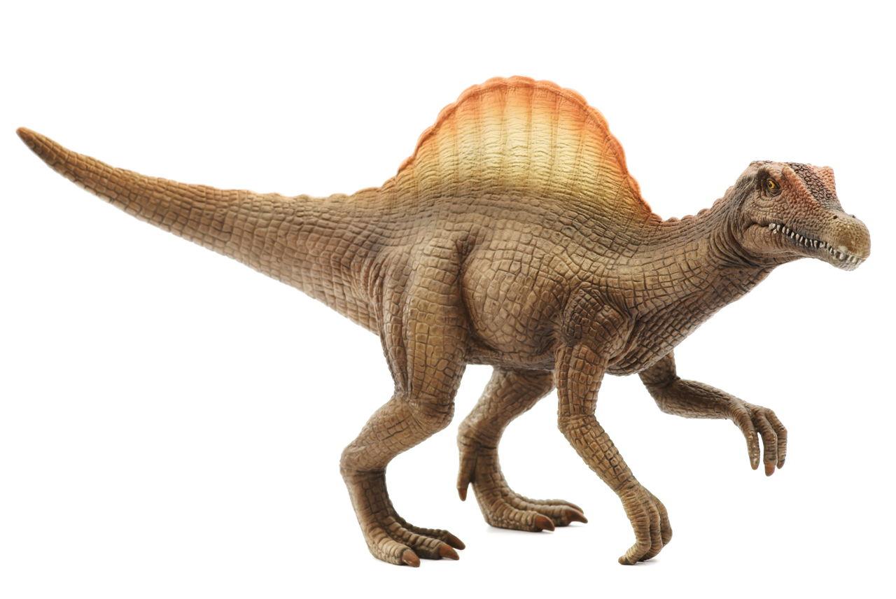 Spinosaurus Facts