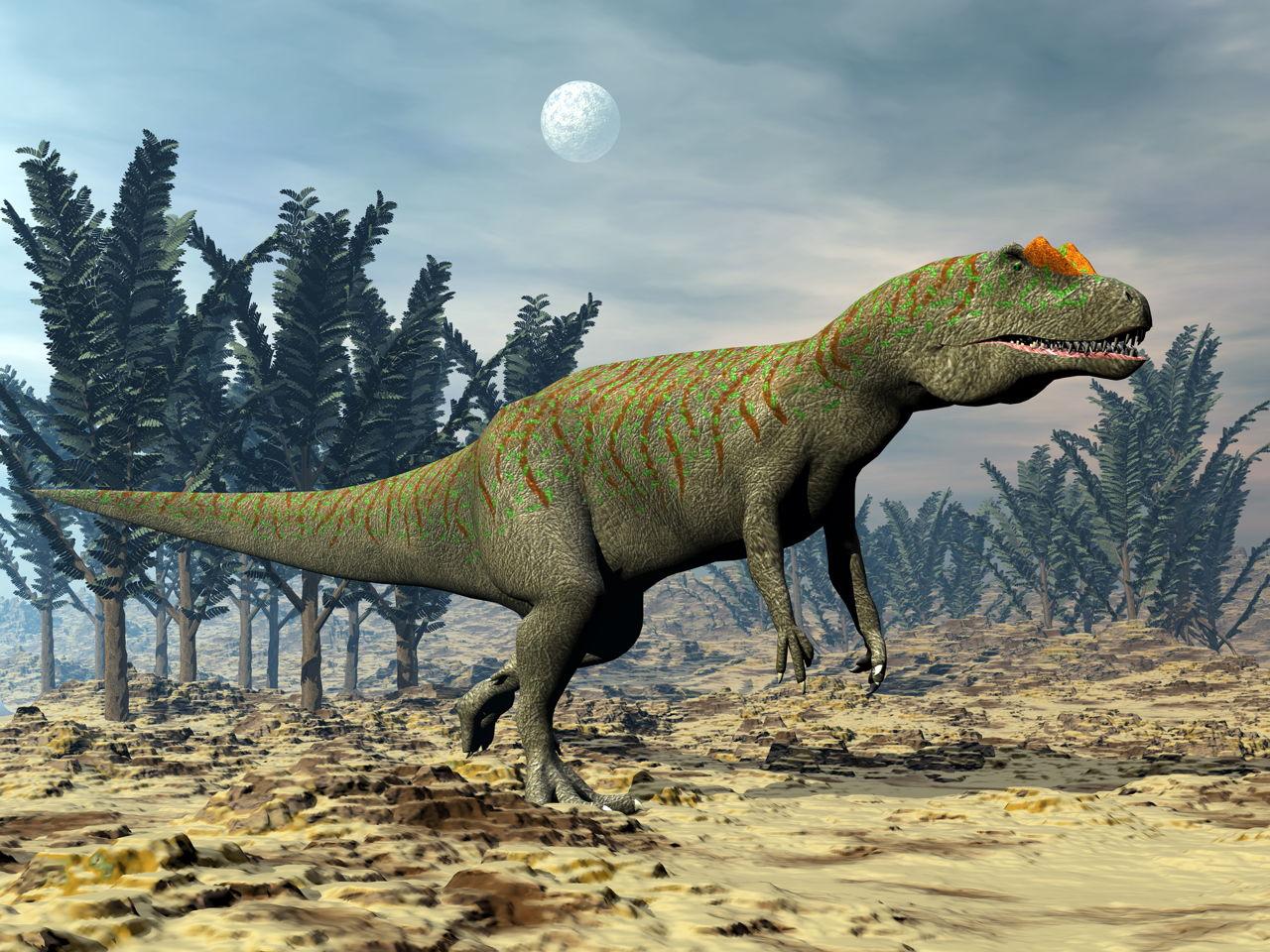 Types of Dinosaurs - Animal Sake
