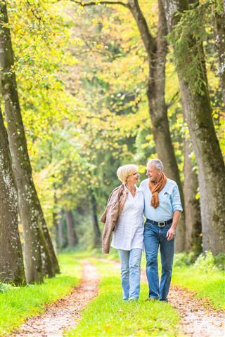 Senior Couple Having Leisure Walk