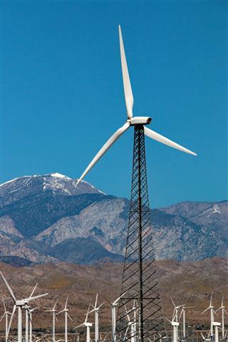 One Tall Windmill