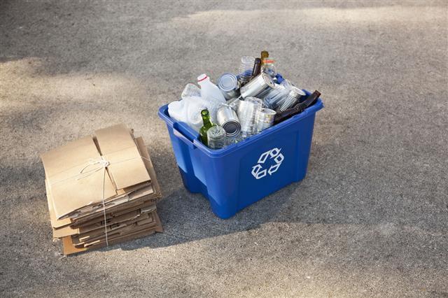 Recycling Bin And Cardboard