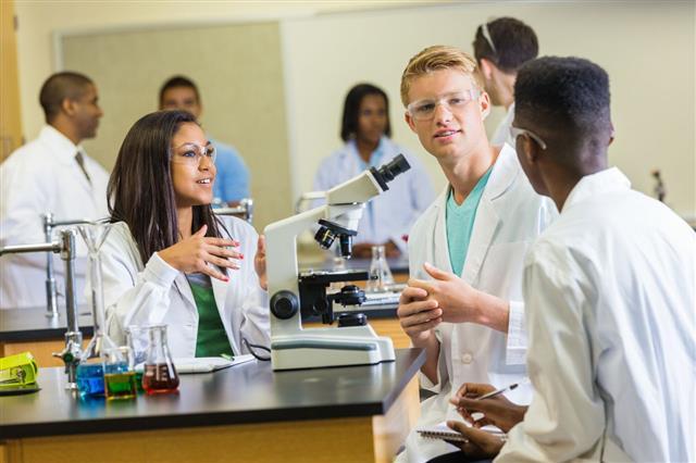 Science Classmates Discussing Assignment
