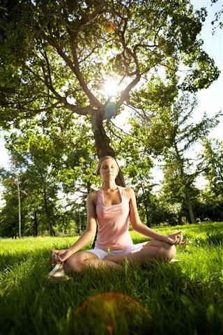 Meditating under the tree