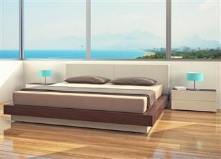 Minimalist Modern Bedroom