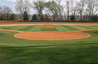 Perfect Green Baseball Field