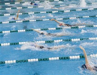 Backstroke Race