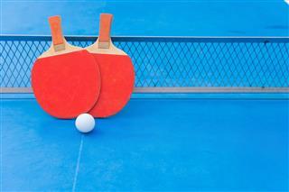 Ping Pong Playing Kit