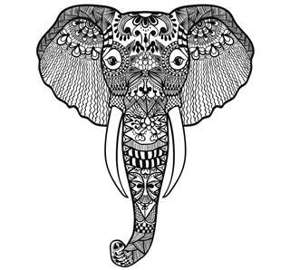 Hand drawn elephant head