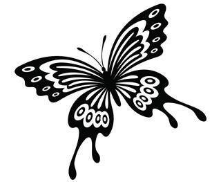 [attern of flying butterfly