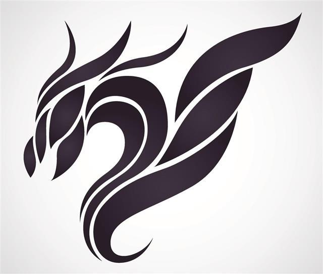 Dragon vector design