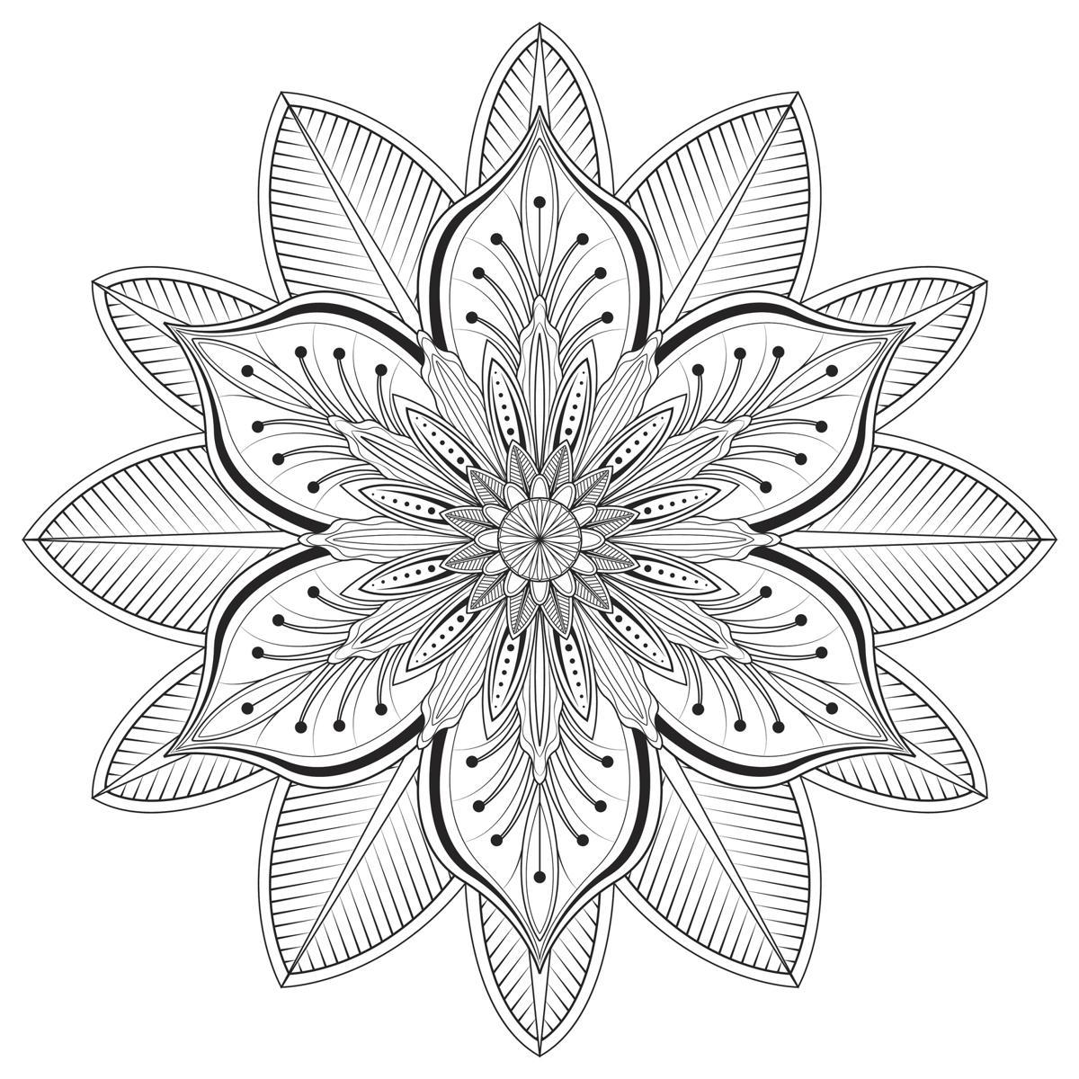 Aster flower tattoo flower mandala vector illustration izmirmasajfo