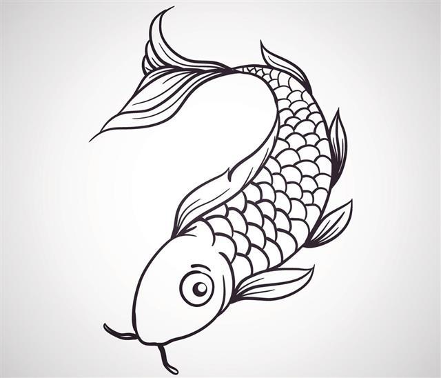 Koi fish vector tattoo