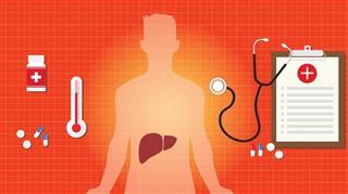 Hepatitis a b c liver disease human organ virus medicine