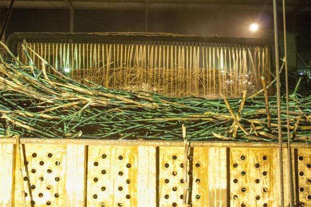 Ethanol Manufacturing