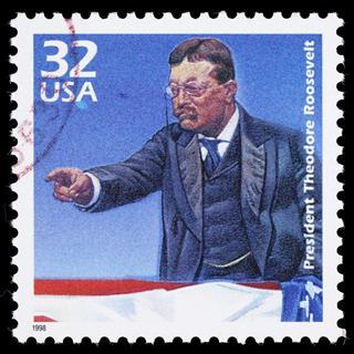 USA Theodore Roosevelt postage stamp