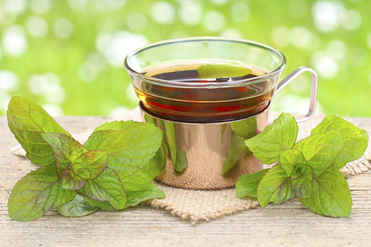 Tea Peppermint
