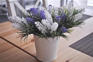 Plastic lavender flower