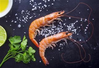 Overhead shot of fresh shrimps on dark background