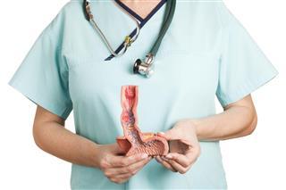 Esophagus illnesses