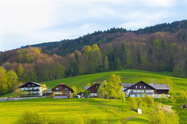 Idyllic Austrian Alpine Cottage