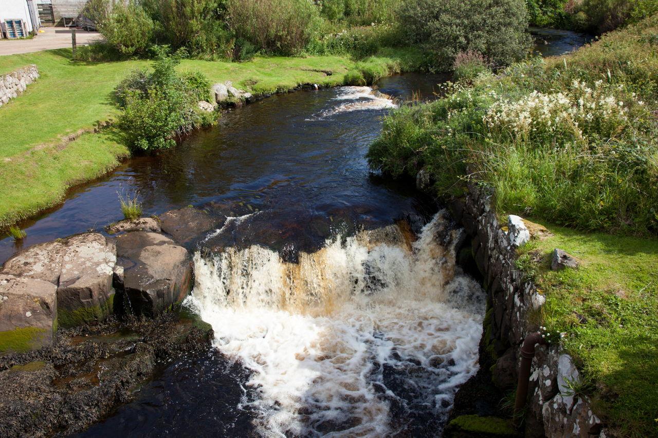 水污染对环境的长期影响