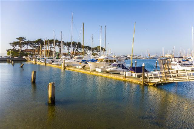 Marina In San Francisco With Boats