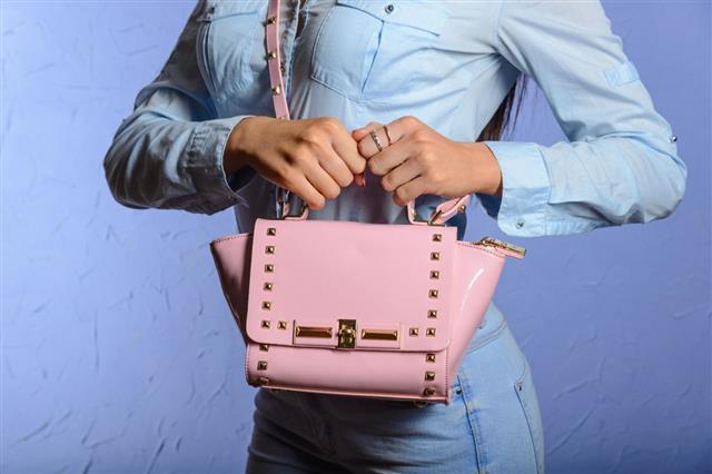 Trendy Woman With Pink Handbag