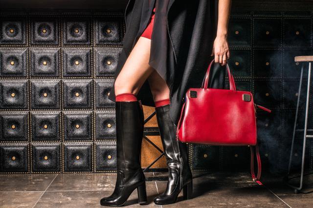 Woman Legs With Handbag