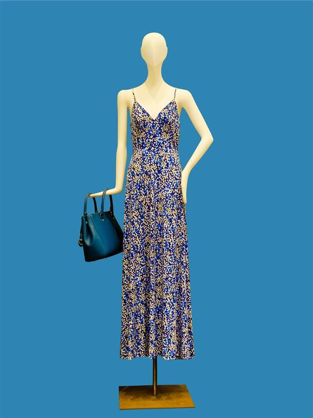 Beautiful Summer Dress On Female